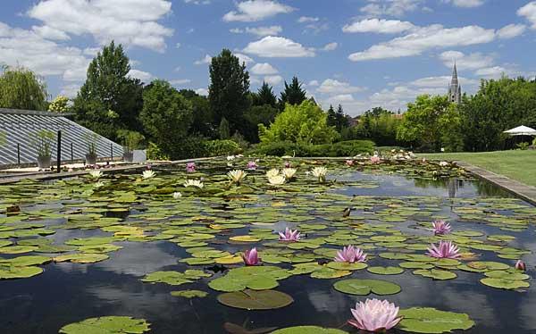 Latour-Marliac view to Temple - copyright Peter Evans