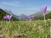 Pyrenees - leisure holidays
